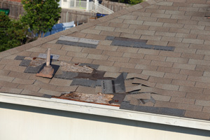 Orland Park & Surrounding Suburbs roof repair